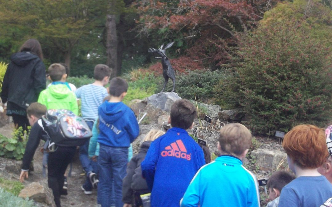 1st – 6th class visit the Botanic Gardens